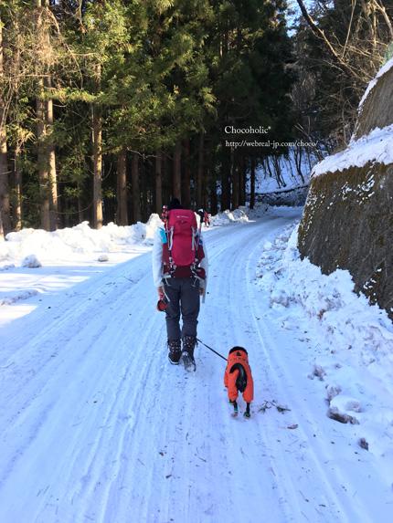 冬の鷹狩山 登山