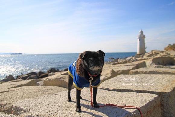 伊良湖岬 灯台