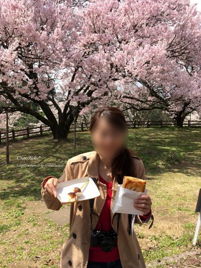 五平餅とアップルパイ お花見