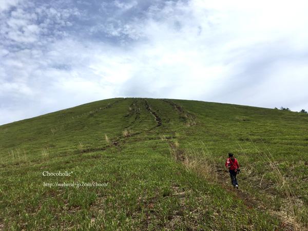 最後は急登 明神山ハイキングコース