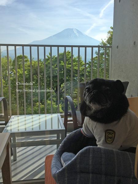 部屋から富士山 ホテル凛香