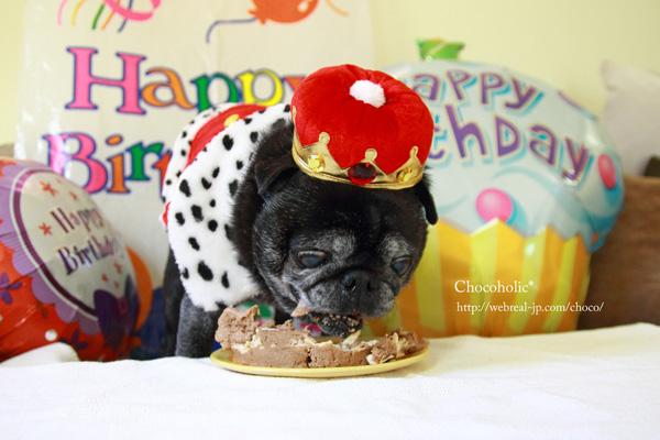 がつがつしてるチョコ 誕生日