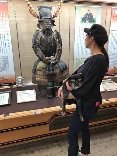 松山城 ペット可